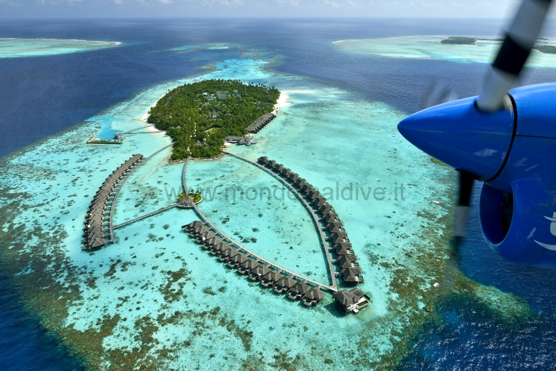 Ayada Maldives Gaafu Dhaalu Isole Maldive