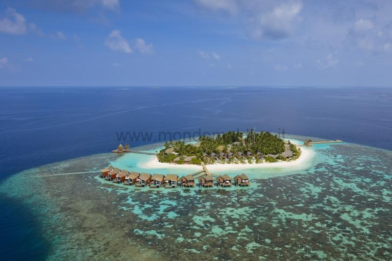 Kandolhu Island Ari Nord Isole Maldive