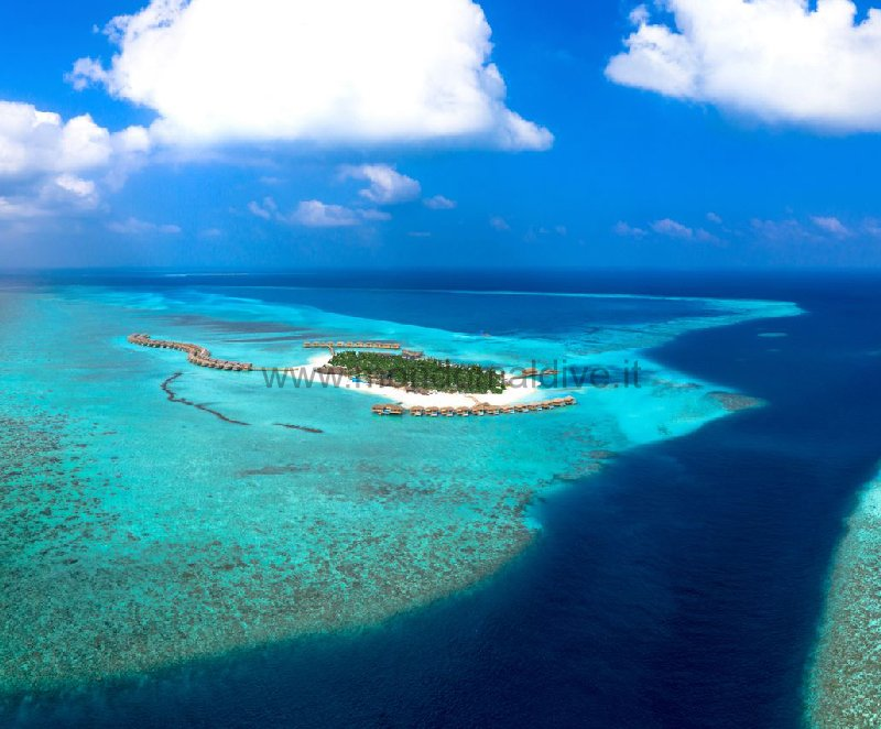 You & Me Cocoon Maldives Raa Isole Maldive