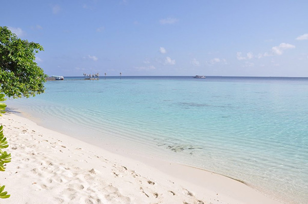 Aaavee Nature's Paradise spiaggia