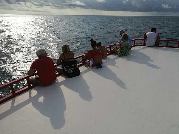 Amari Havodda escursione squalo balena