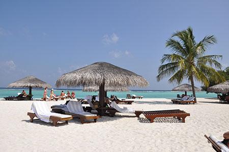 Palm Beach spiaggia lingua