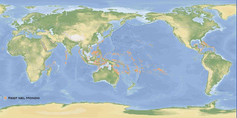 le barriere coralline nel mondo