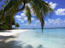 Sun Aqua Vilu Reef Dhaalu Maldive 32