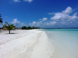 Sun Aqua Vilu Reef Dhaalu Maldive 30