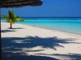 Sun Aqua Vilu Reef Dhaalu Maldive 24