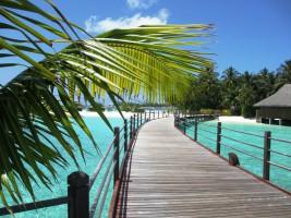 Sun Aqua Vilu Reef Dhaalu Maldive 19