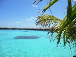 Sun Aqua Vilu Reef Dhaalu Maldive 18