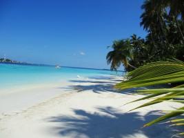 Sun Aqua Vilu Reef Dhaalu Maldive 14