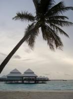 Thudufushi Diamonds Island Resort Ari Sud Maldive 1