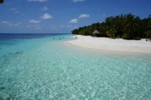Vilamendhoo Island Resort Ari Sud Maldive 4