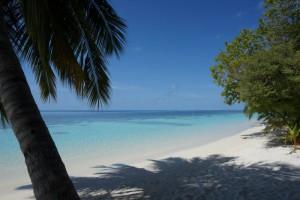 Vilamendhoo Island Resort Ari Sud Maldive 21