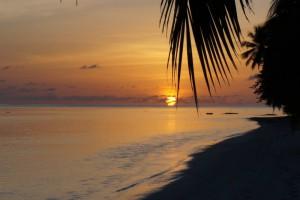 Vilamendhoo Island Resort Ari Sud Maldive 45