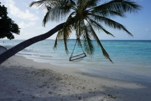 Vilamendhoo Island Resort Ari Sud Maldive 79