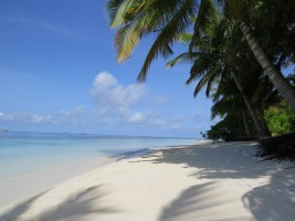 Vilamendhoo Island Resort Ari Sud Maldive 2