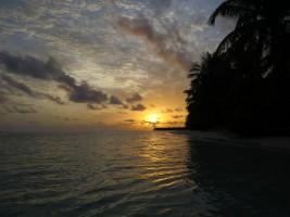 Vilamendhoo Island Resort Ari Sud Maldive 7