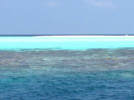 Vakarufalhi Maldives Ari Sud Maldive 3