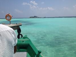 Vakarufalhi Maldives Ari Sud Maldive 4