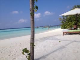 Vakarufalhi Maldives Ari Sud Maldive 2