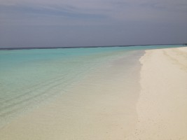 Vakarufalhi Maldives Ari Sud Maldive 11