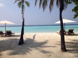 Vakarufalhi Maldives Ari Sud Maldive 24
