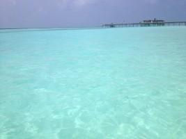 Vakarufalhi Maldives Ari Sud Maldive 27