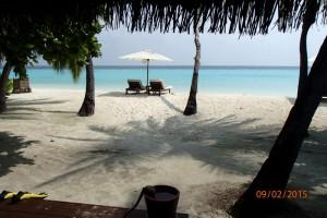 Vakarufalhi Maldives Ari Sud Maldive 29