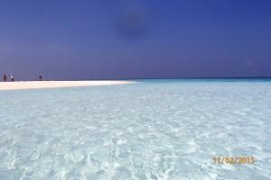 Vakarufalhi Maldives Ari Sud Maldive 31