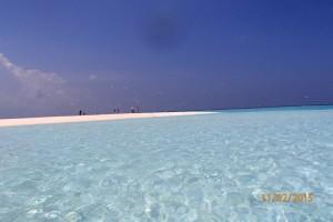 Vakarufalhi Maldives Ari Sud Maldive 32