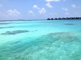 Vakarufalhi Maldives Ari Sud Maldive 33