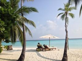 Vakarufalhi Maldives Ari Sud Maldive 36