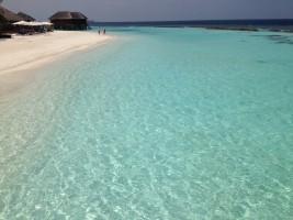 Vakarufalhi Maldives Ari Sud Maldive 58