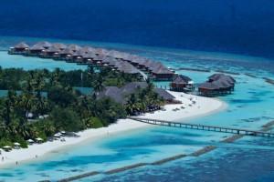 Vakarufalhi Maldives Ari Sud Maldive 66