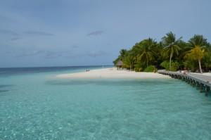 Vilamendhoo Island Resort Ari Sud Maldive 8