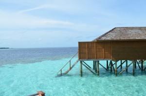 Vilamendhoo Island Resort Ari Sud Maldive 6
