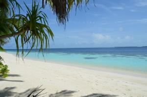 Vilamendhoo Island Resort Ari Sud Maldive 5