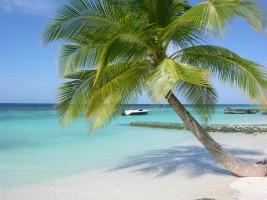 Velidhu Island Resort Ari Nord Maldive 15