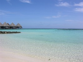 Velidhu Island Resort Ari Nord Maldive 16