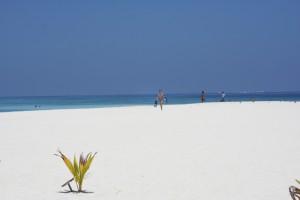 Thudufushi Diamonds Island Resort Ari Sud Maldive 11