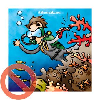 Non toccare i coralli