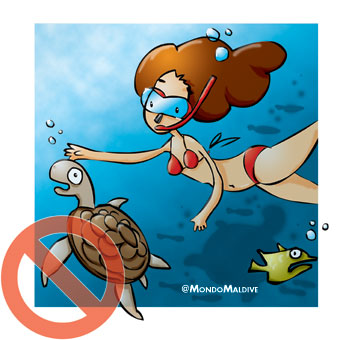 Evita di toccare i pesci